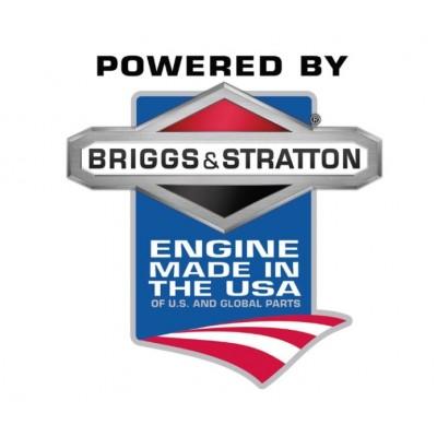 TORO 550 C REC SMART RANGER Recycleur - Tondeuse et un Moteur à essence Briggs & Stratton