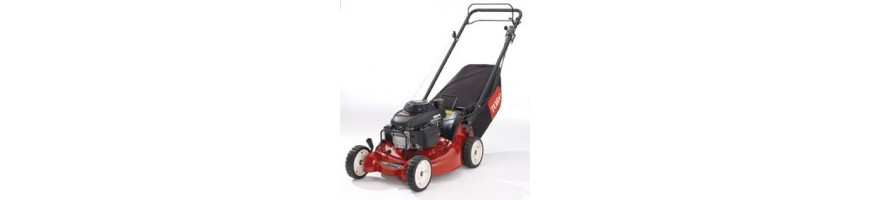 lawn Mower to engine for gardens large and medium-sized.