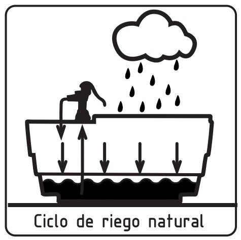 Super Huerto. Ciclo de riego natural.
