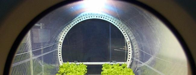 La NASA cultivará un vivero en la Luna el 2.015_01