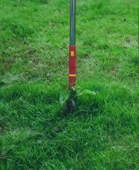 Quitar malas hierbas manualmente. © Outils WOLF